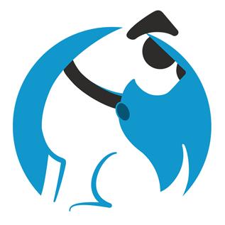 Windows Administrator / DevOps Engineer